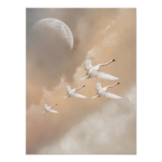 Flying Swans Poster
