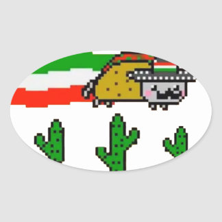 Flying Taco Cat Oval Sticker