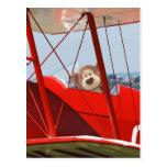 Flying Teddy Bear Postcard