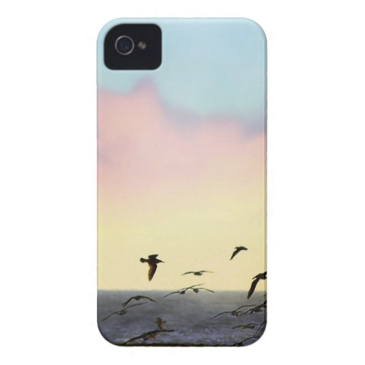 Flying toward sunset iPhone 4 covers