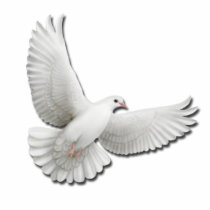 Flying White Dove Pin Statuette