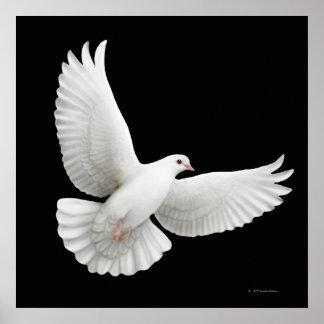 Flying White Dove Print