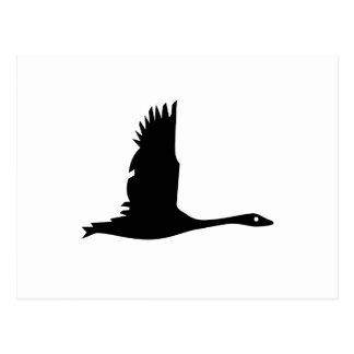 Flying Wild Goose Silhouette - Postcard
