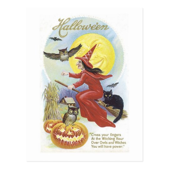 Flying Witch, Bats, Cat, Owl Moon Postcard