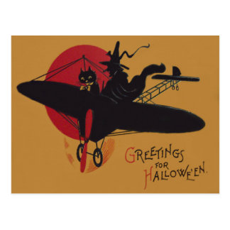 Flying Witch Black Cat Airplane Full Moon Postcard