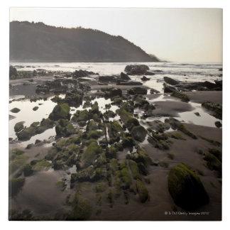 Flysch en la costa de Deba, Guipuzcoa, vasco Azulejo Cuadrado Grande