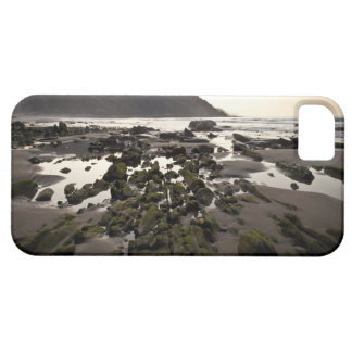 Flysch en la costa de Deba, Guipuzcoa, vasco Funda Para iPhone 5 Barely There