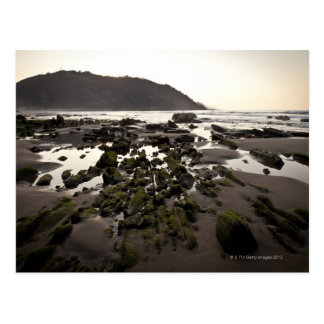Flysch en la costa de Deba, Guipuzcoa, vasco Tarjetas Postales