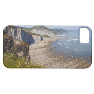 Flysch en la costa de Zumaia, Guipuzcoa, vasco Funda Para iPhone 5 Barely There