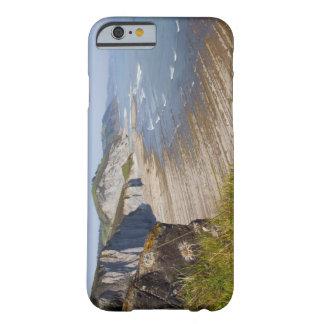 Flysch en la costa de Zumaia, Guipuzcoa, vasco Funda Para iPhone 6 Barely There