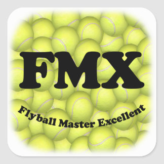 FMX, Flyball Master Square Stickers