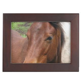 foal-9 keepsake box