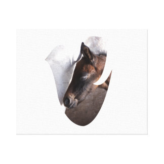 foal and mother dove shape canvas print