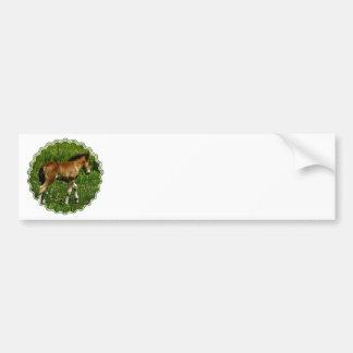 Foal Bumper Stickers