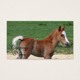 Foal Business Card