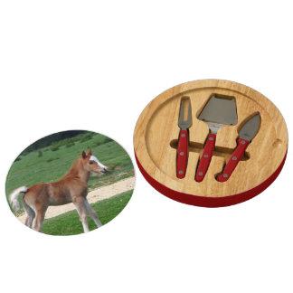 Foal Cheese Platter