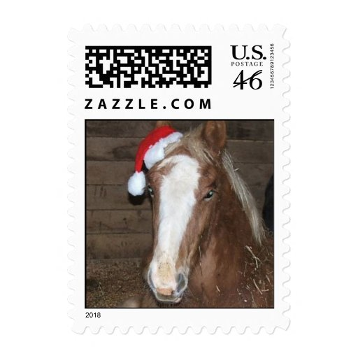 Foal Christmas Stamp