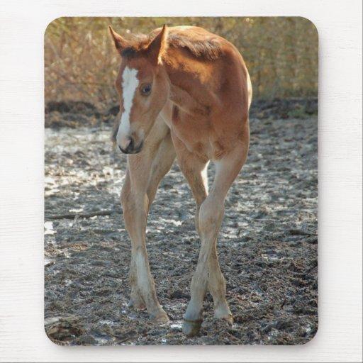 Foal dancing ballet mousepad