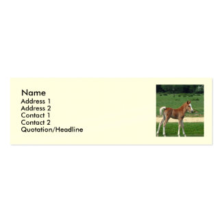 Foal Double-Sided Mini Business Cards (Pack Of 20)