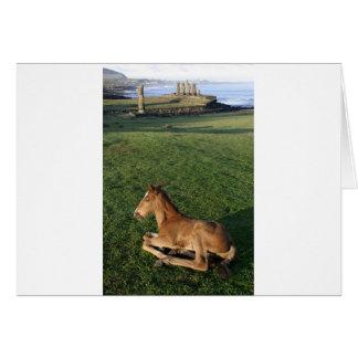 Foal Easter Island (Rapa Nui). Card