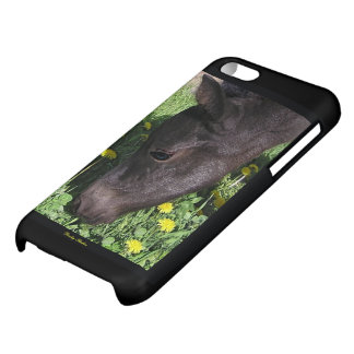 Foal Eye Case For iPhone 5C