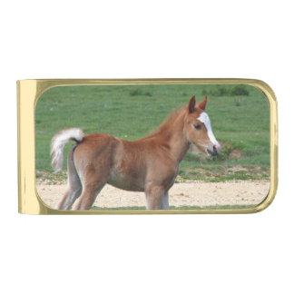 Foal Gold Finish Money Clip