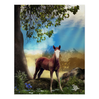 Foal Horse in Paradise Poster