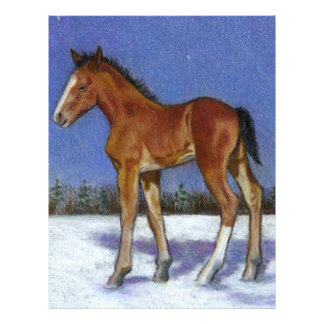 FOAL IN SNOW: EQUINE ART: COLOR PENCIL FULL COLOR FLYER