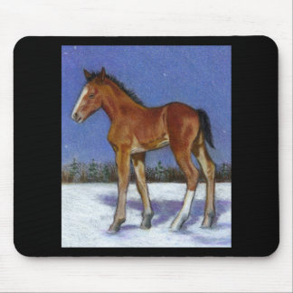 FOAL IN SNOW: EQUINE ART: COLOR PENCIL MOUSE PAD