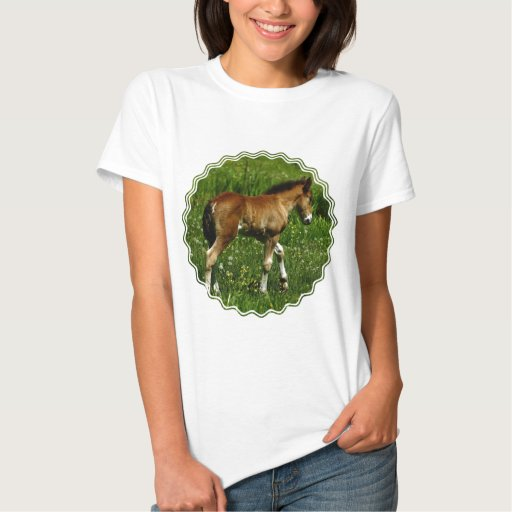 Foal Ladies Fitted T-Shirt