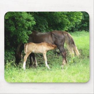 Foal Mousepad mousepad