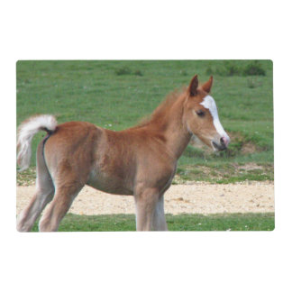 Foal Placemat