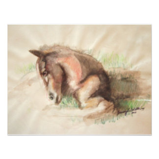 Foal Relaxing Personalized Announcements