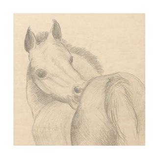 foal scritching wood print