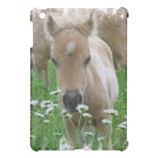 Foal Smelling Daisies iPad Case