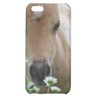 Foal Smelling Daisies iPhone Case Cover For iPhone 5C