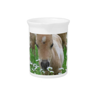 Foal Smelling Daisies Pitcher