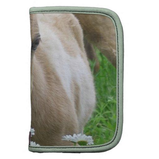 Foal Smelling Daisies Wallet Folios Organizers