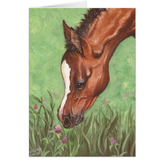 Foal Sniffing Clover Greeting Card