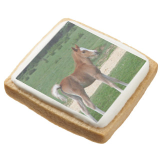 Foal Square Shortbread Cookie