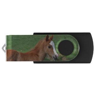 Foal Swivel USB 2.0 Flash Drive