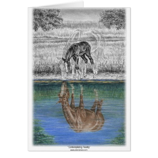 Foal Water Reflection of Horse Card