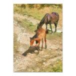 """Foals 5"""" X 7"""" Invitation Card"""