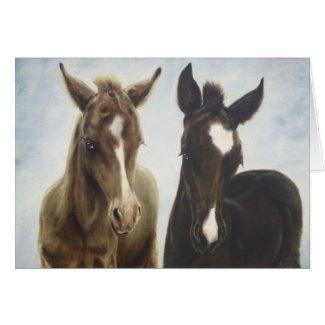 Foals Blank Card
