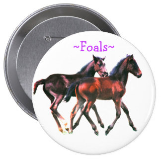 Foals Playing Pin Button