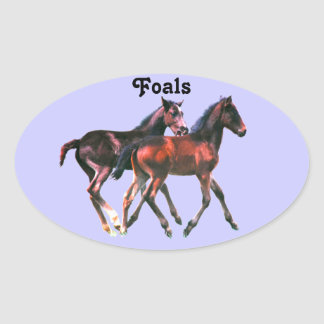 Foals Playing Stickers