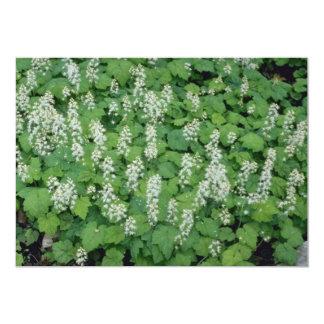 Foamflower (Tiarella Cordifolia) flowers 5x7 Paper Invitation Card