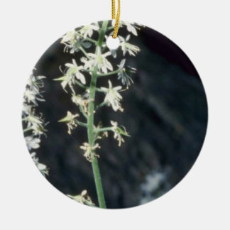 Foamflower (Tiarella Cordifolia) flowers Double-Sided Ceramic Round Christmas Ornament