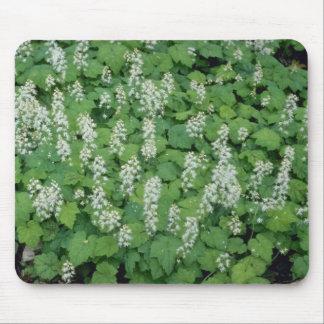 Foamflower (Tiarella Cordifolia) flowers Mouse Pad