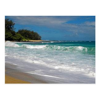 Foamy Surf Postcard